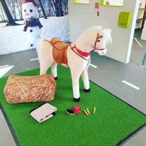 Home hire horse set